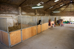 High quality hunt style stabling all undercover.